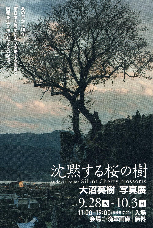 ◆20210928~1003 沈黙する桜の樹 大沼英樹/写真展